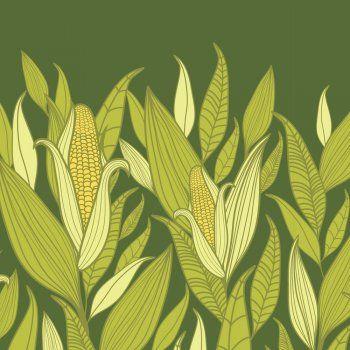 En Guiainfantil.com te contamos la leyenda del maíz, un cuento corto mexicano que puedes leer a los niños. Leyendas cortas para contar a los niños. Cuentos infantiles de México.
