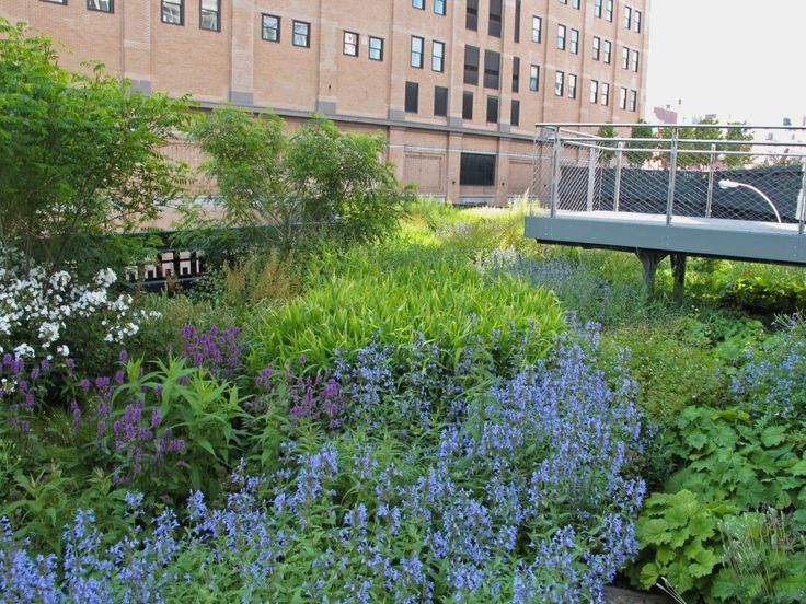 Piet Oudolf ~ High Line, Manhattan, New York, NY. _/\ · Highline NycPublic  GardenHigh ...