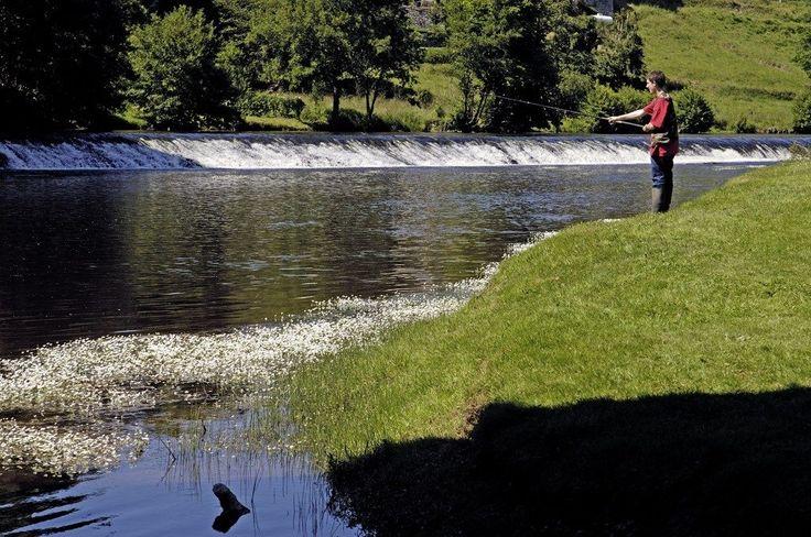 Amis pêcheurs, ou pêcheurs en devenir, soyez les bienvenus en Creuse! La Creuse est «ce paradis des pêcheurs» que vous cherchiez. Et vous savez pourquoi? Lisez plus bas!  Ses 3800 km de rivières et de ruisseaux, ses 3000 ha de lacs et d'étangs vous réservent les sensations qu'offrent les belles prises. Pêcheur au «toc», au lancer, à la mouche, au coup, du petit matin au crépuscule, venez taquiner les poissons de nos eaux claires. Les pêcheurs chevronnés concourant l'ont bien compris…