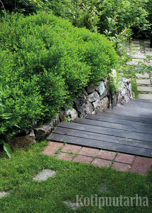 Tukevat lautaportaat helpottavat kulkua rinteessä. Mustaksi maalattu puu myös jäntevöittää maisemaa.