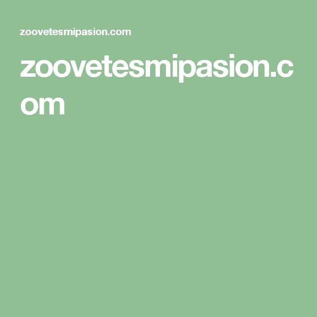zoovetesmipasion.com