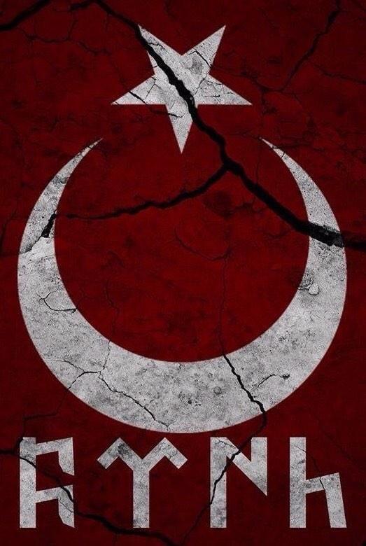 göktürkçe türk logosu - proto turks alphabets