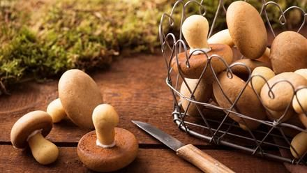 Pilzkekse | Denn wir gehen nicht Pilze sammeln, sondern Pilze backen.