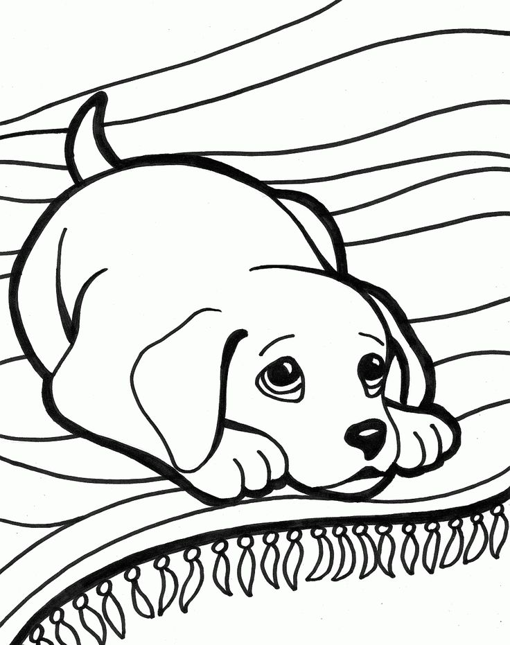Printable Coloring Book Pictures Of Animals : 33 best dog coloring pages images on pinterest