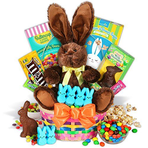 11 best best gourmet easter candy baskets 2016 images on pinterest classic easter basket activity holiday hide hunt themed brand new negle Gallery