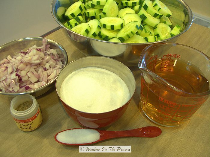 Quick Homemade Refrigerator Pickles « Window On The Prairie