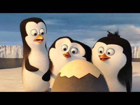 New Animation Movies 2017 - Disney Movies Full Length English Cartoon Movies HD - Comedy Movies - YouTube