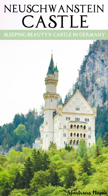 neuschwanstein castle tour from munich finding sleeping. Black Bedroom Furniture Sets. Home Design Ideas