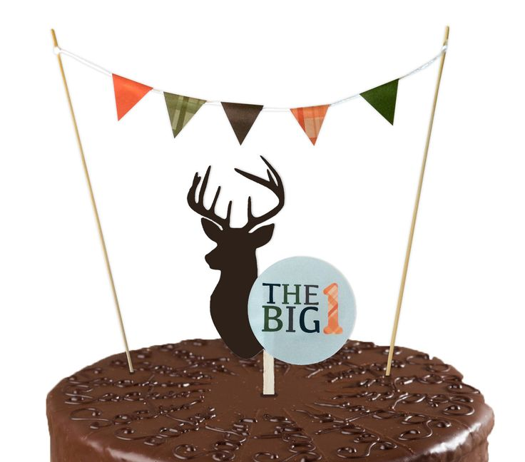 Deer Hunting Birthday Cake Topper // Smash Cake Topper // Double Sided - Printed…