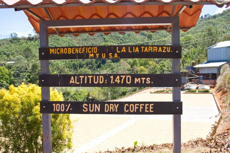 Costa Rican 2012 Sourcing Trip | Flickr - Photo Sharing!