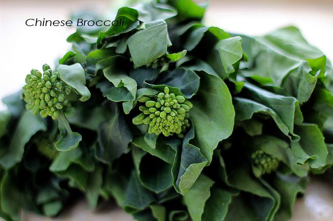 Chinese Broccoli Stir Fry