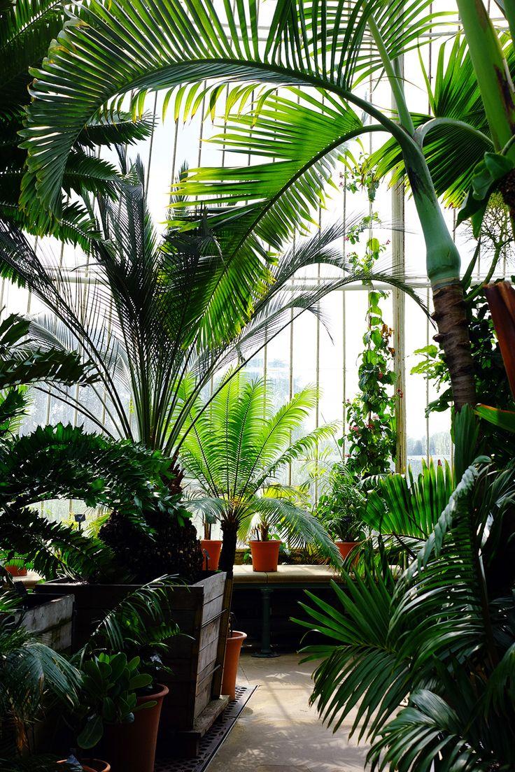 7 best conservatory room images on pinterest