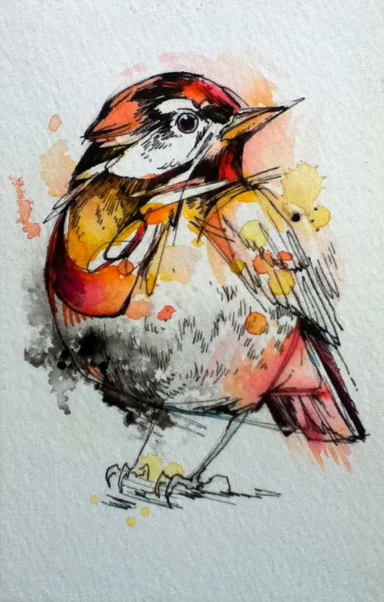 """Little Robin- 4""""x6"""" Original Ink & Watercolor. $30.00, via Etsy. Home goods to Fashion http://www.islandheat.com for Great Gift Idea's"""