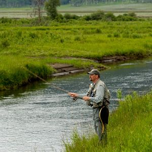 Things to do in yellowstone sunset yellowstone national for Fly fish usa