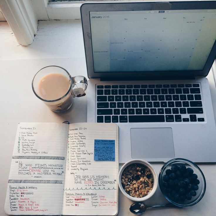 hideandstudy: { January 9th 2016 }Can one go wrong with tea, greek yoghurt with granola, and blueberries? Looking at old pages in my bullet journal while eating breakfast was the perfect way to get me motivated this morning. || 1 / 100 days of productivity ||