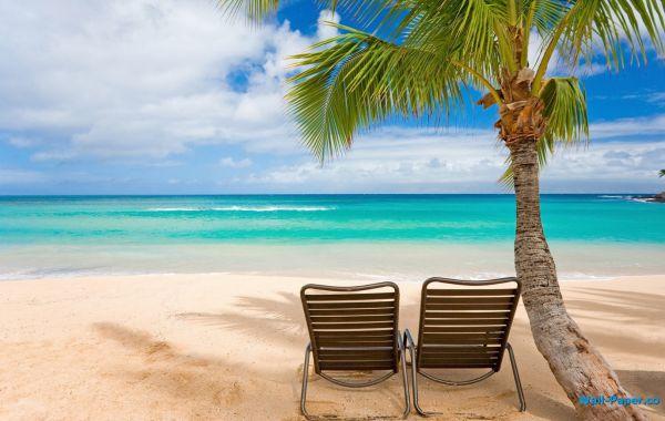 sfondi-hd-tropicale http://pcwallpaper.altervista.org/sfondi-hd-gratuiti-per-il-desktop-con-soggetto-magnifici-paesaggi-tropicali/#