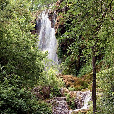 Gorman Falls, Colorado Bend State Park Primavera en el bosque.. Entre cascadas y senderos..