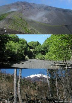 静岡県の富士宮市富士市裾野市御殿場市に広がる富士山自然休養林は富士山のふもとに広がる広大な森林浴とハイキングが楽しめるところなんだ そのコースは公式のもので13コース 40分ほどで気軽に楽しめるものから往復で6時間を超える本格的なものも 富士山の二合目から六合目にかけて広がっているので高低差も結構あるから行くときは体力と健康に気を付けていかないとね tags[静岡県]