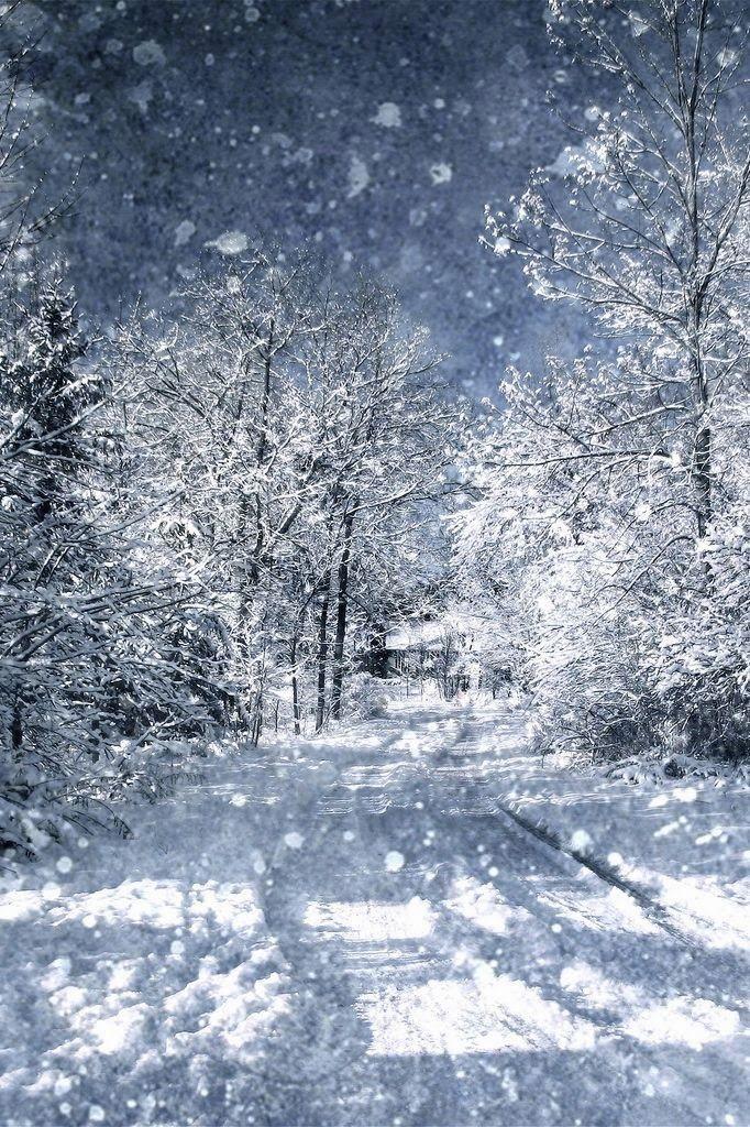 winter city lane with - photo #30