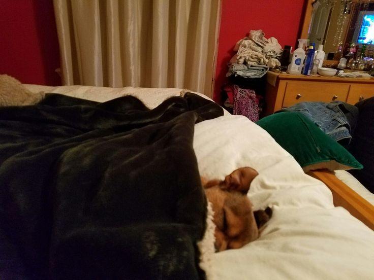 Bedtime 😴