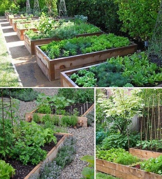 Vysněná zahrada