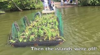 Floating a great idea: Man-made islands purify water in Land of 10,000 Lakes