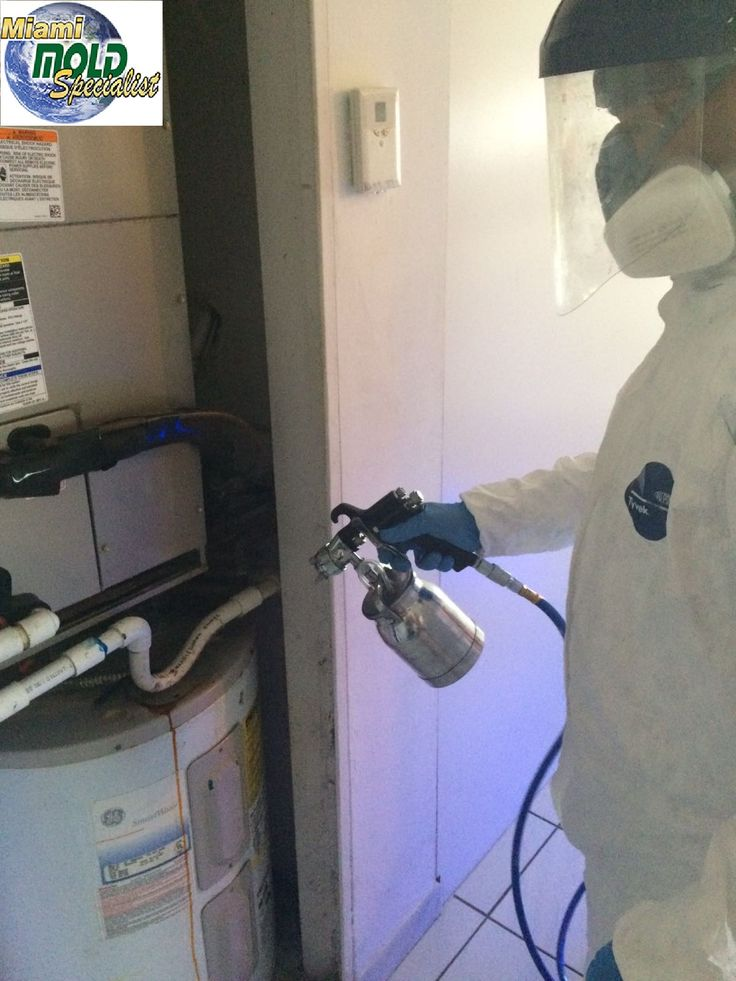 Miami Mold Specialists has an #advanced #understanding of #mycology and #microbiology, as well as the #testing, #inspection and #remediation protocols necessary to return #mold contaminated properties to a healthy state.