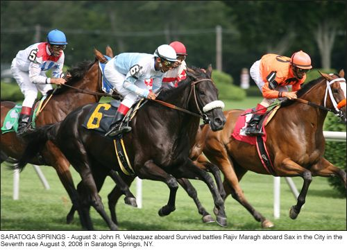 Story Behind the Photo: Saratoga Horse Racing — The Shutterstock Blog