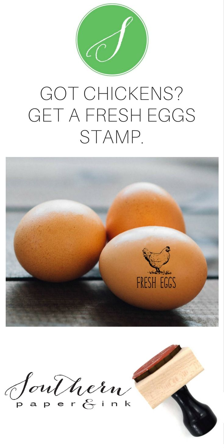A Fresh Eggs stamp is a great way to personalize your backyard chicken eggs from your own chicken coop. Homesteading? There's a mini size just for chicken eggs and larger customizable sizes for egg cartons, tags and even farm return address stamps. Learn more at Southern paper & Ink Custom Stamps.