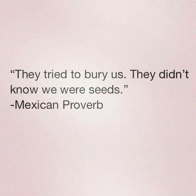 """They tried to bury us. They didn't know we were seeds."" - Mexican proverb"