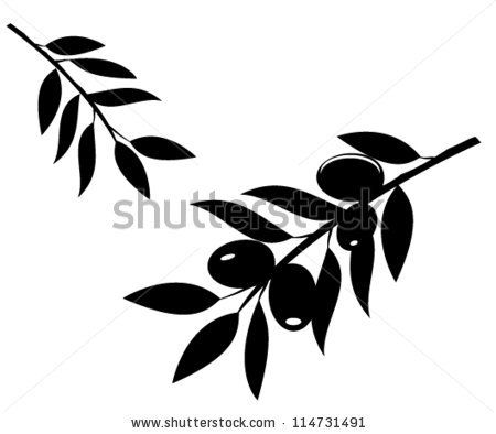 olive branch drawing - Google Search
