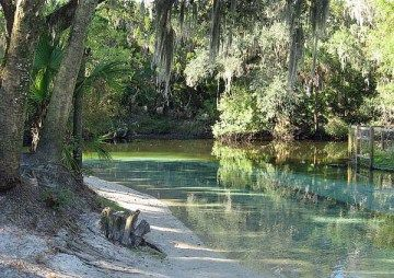 lithia-spring-alafia-river best camping near Tampa