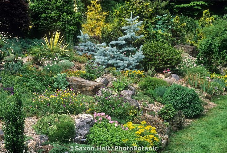39 best garden images on Pinterest | Garden ideas, Landscaping ideas Dwarf Conifer Rock Garden Design Id E A on