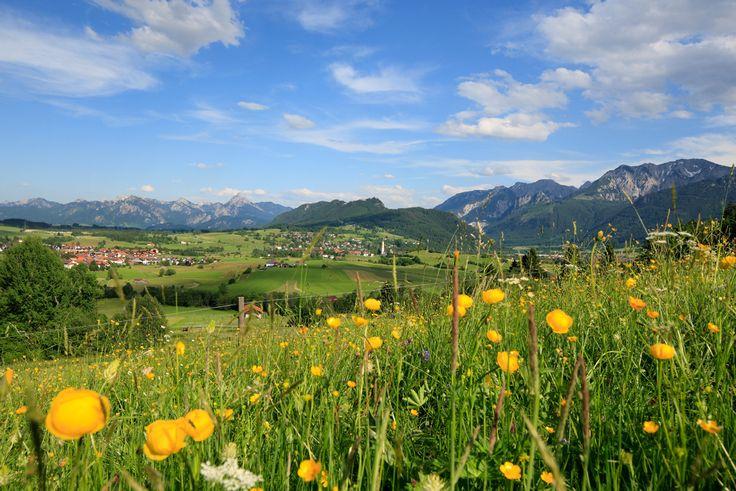 Das Pfrontener Tal mit Blick auf den Säuling - Foto by E. Reiter