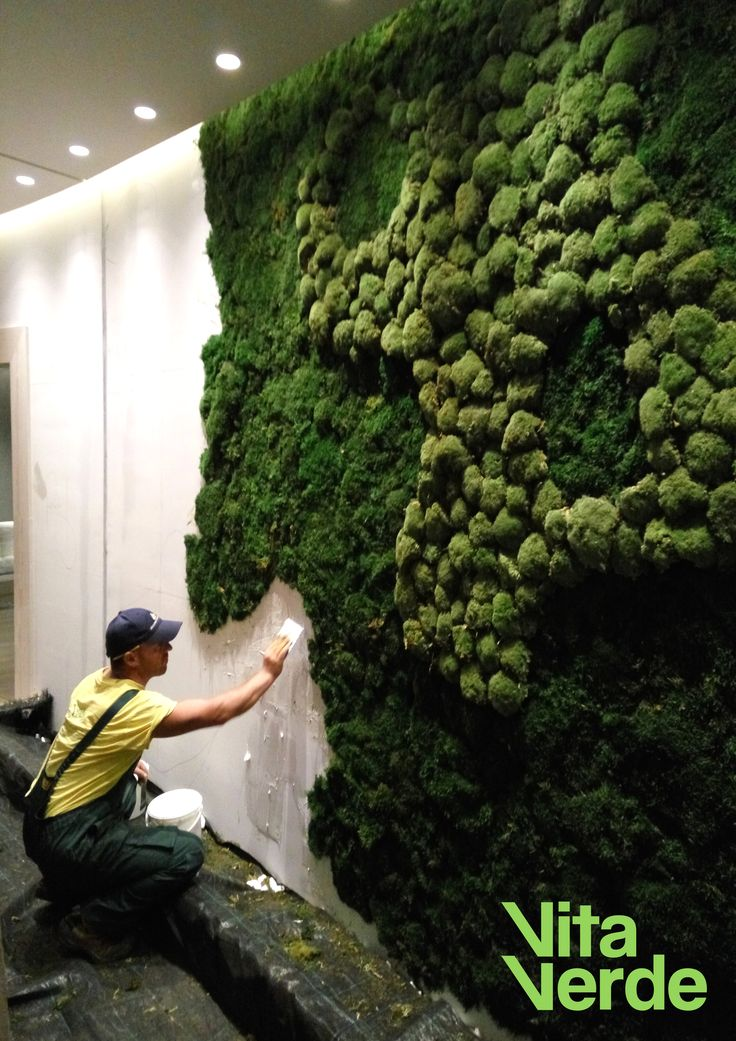 Freshen up your #hotel or office #interior with amazing moss wall custom-made designs. Tell us your ideas and let our team do the rest.
