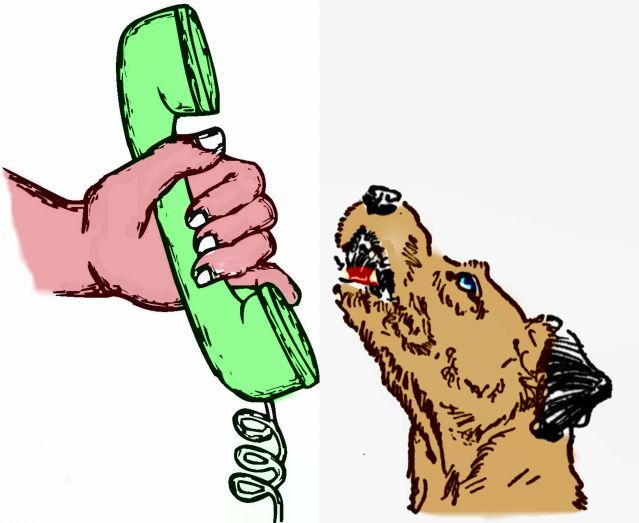 Three dimensions of sound influence the meaning of dog's barks.