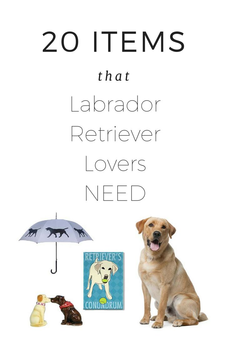 76 best dog products images on pinterest dog products for Dog house for labrador retriever
