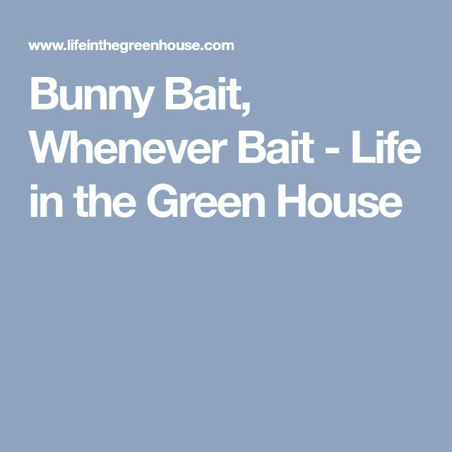 Bunny Bait, Whenever Bait - Life in the Green House