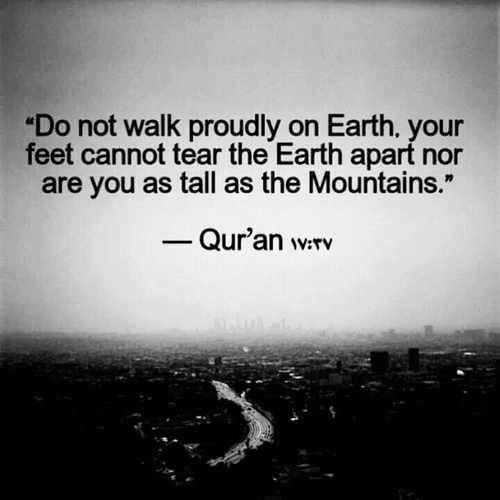 """Do not walk proudly on Earth. Your feet cannot tear the Earth apart nor are you as tall as the Mountains."" - Quran 17:37"
