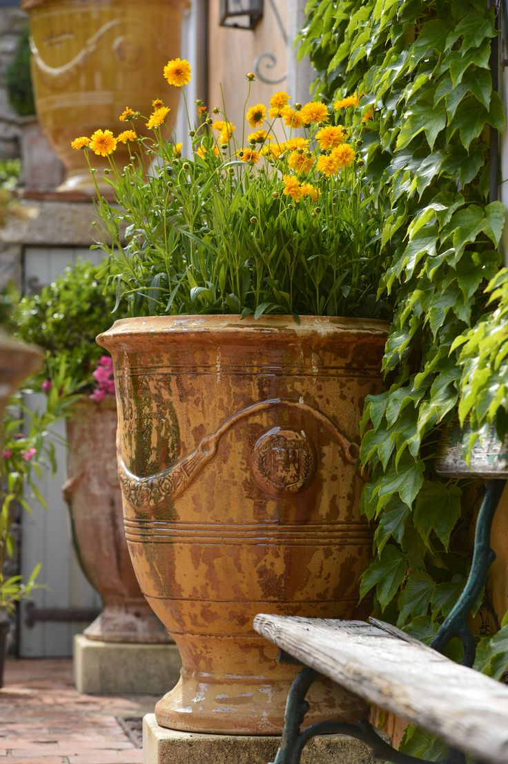 58 best french anduze pottery images on pinterest | plant pots