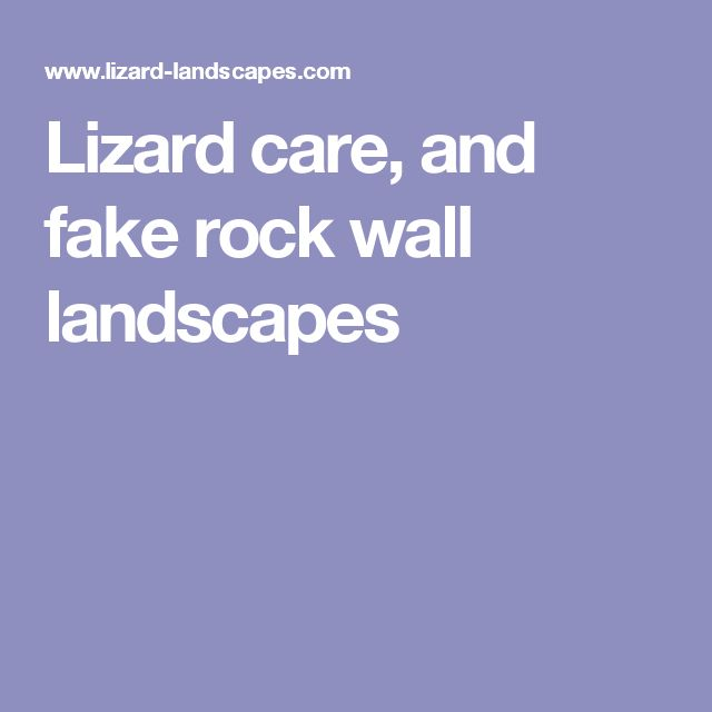 Lizard care, and fake rock wall landscapes