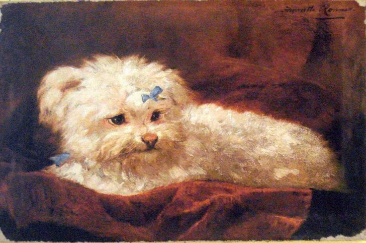 Vintage Painting Print On Canvas Dog Maltese Rococo Ready to Hang