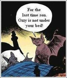 funny halloween quotes sayings - Google Search