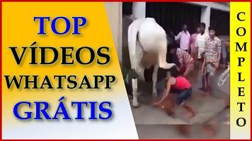 Videos Engraçados Para Whatsapp Gratis