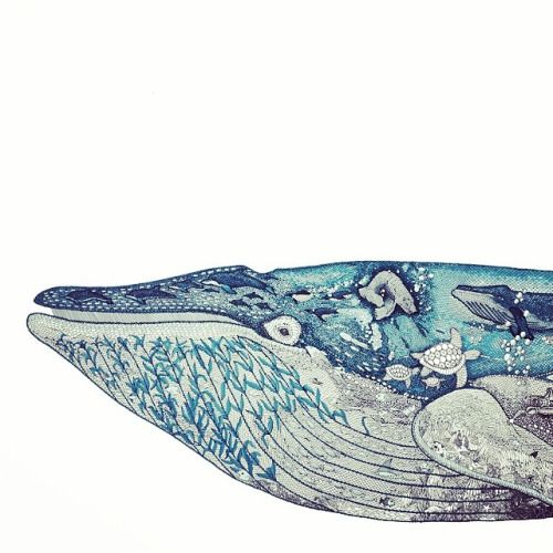 clairescullyillustration:  And for my next trick…… All the oceans creatures I could think of in my Noah's Ark of a blue whale. #illustration #drawing #nature #naturalhistory #nautical #bluewhale #whale #sea #ocean