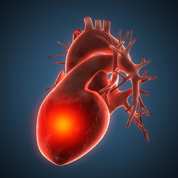 Learning some key facts about heart disease symptoms—including signs of a heart attack and high blood pressure—is the first step in answering the question. http://universityhealthnews.com/daily/heart-health/what-is-heart-disease/