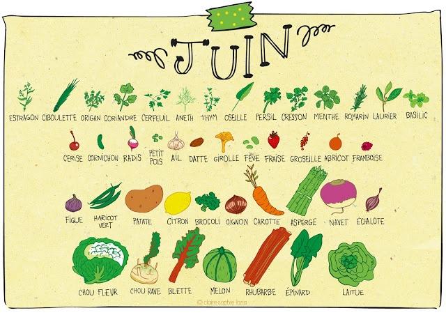 pissenlit: Juin - Calendrier des fruits et légumes