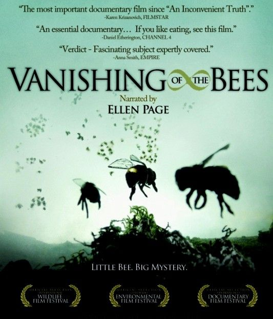 Watch this if you can-- important to know  Scary and important...share!Film, Food, Gardens, Vanishing Bees, Movie, Documentaries, Earth Day, Watches, Honey Bees