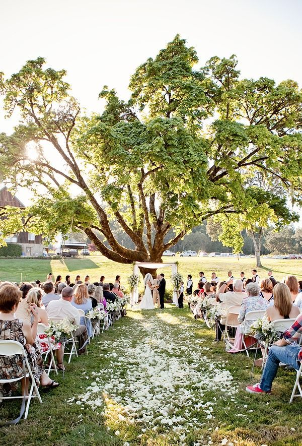 ceremony under a treeOutdoor Ceremonies, Wedding Ceremonies, Outdoor Wedding, Floral Design, Photography Wedding, Brooks Photography, Aisle Markers, Aisle Flower, Outside Wedding
