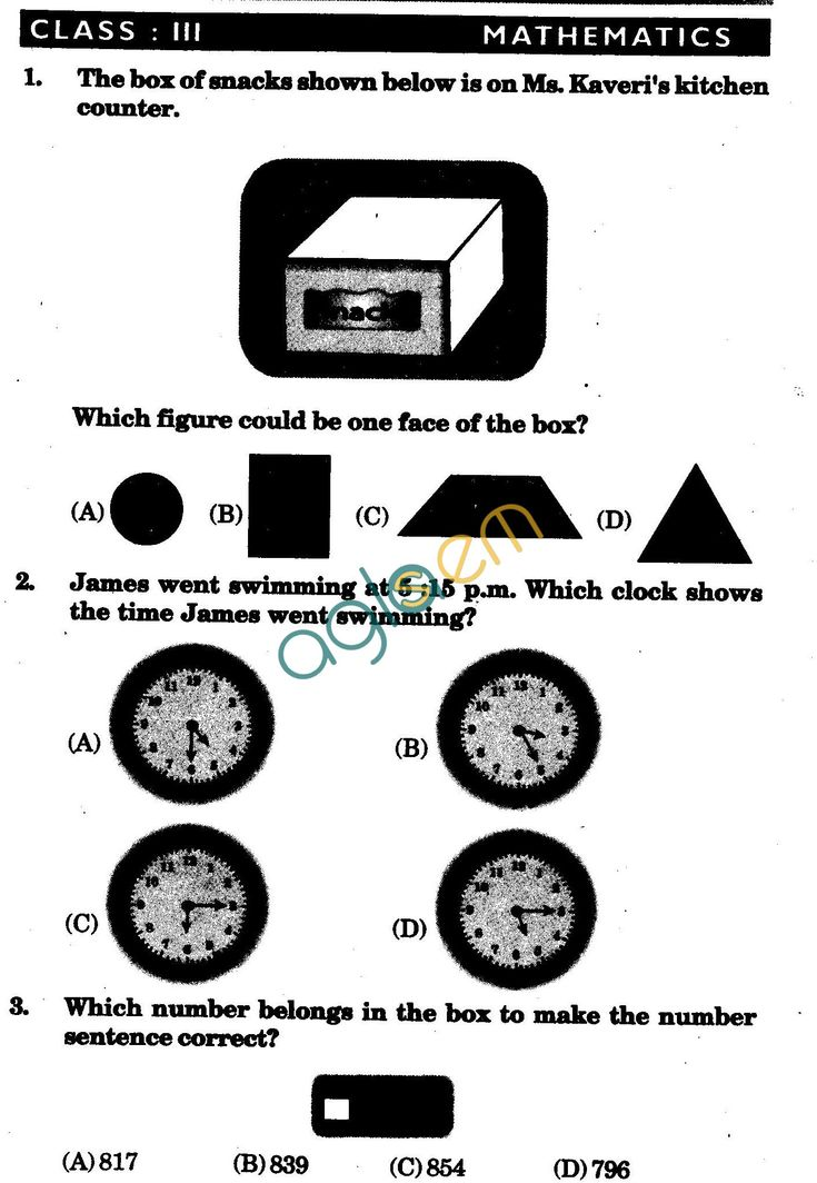 NSTSE 2009 Class III Question Paper with Answers